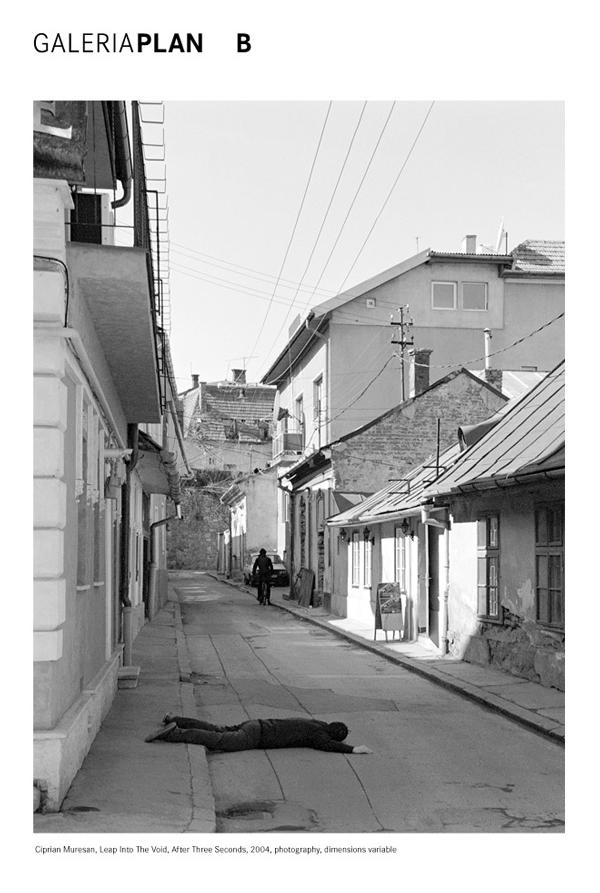 Colectia Mircea Pinte la Muzeul de Arta Cluj