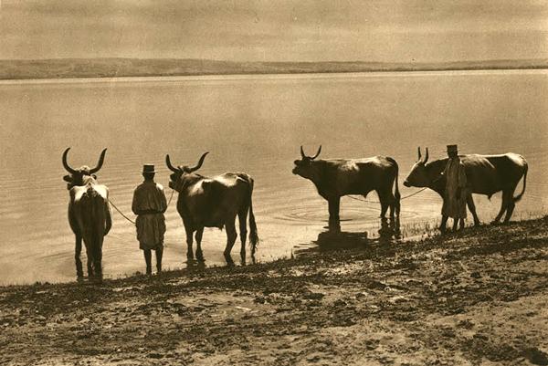 Mirifica Românie din 1933 în alb și negru
