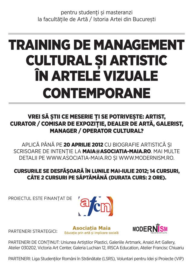 Training de management cultural și artistic în artele vizuale contemporane