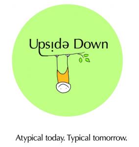 Proiectul Upside Down, finalist la Social Impact Award 2012: foloseste creativ deseuri si rebuturi