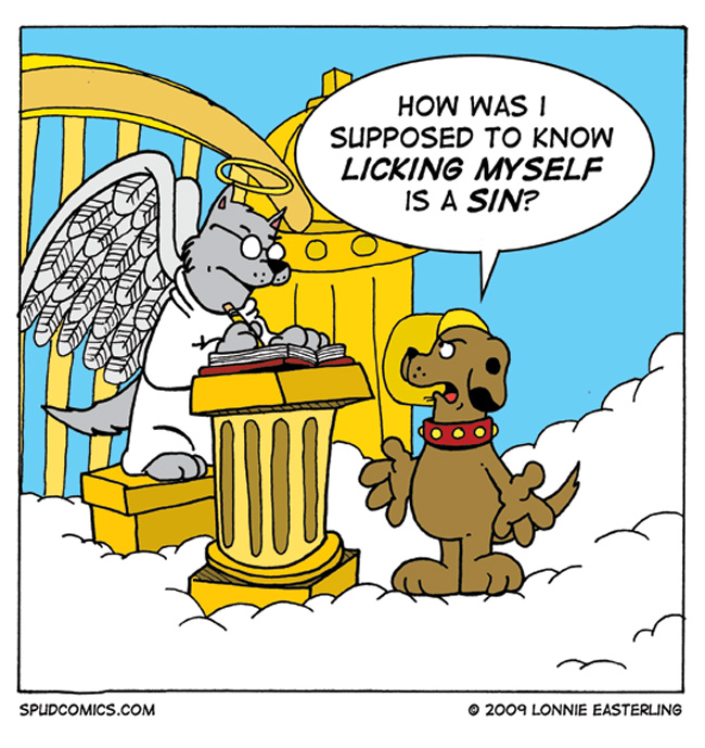 Judgment in Dog Heaven