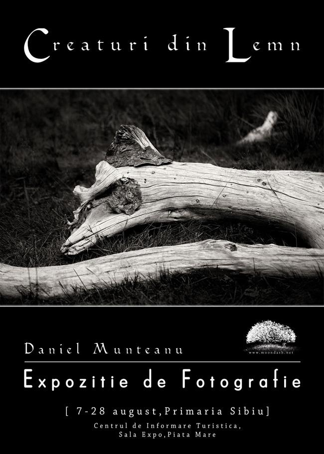 """Expoziție de fotografie Daniel Munteanu, """"Creaturi din Lemn"""" @ Sala Expo – Info Point, Piața Mare, Sibiu"""