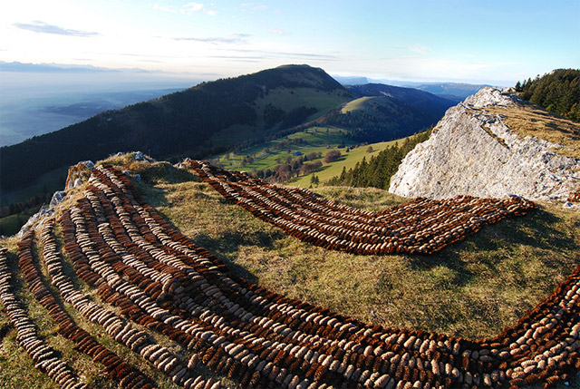 Pine Cone Land Art from Sylvain Meyer