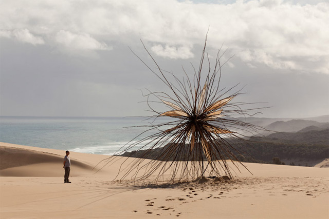 Giant Tree Branch Sculpture Installed at Croajingolong National Park by Corey Thomas
