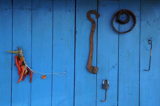 albastru de rogojel