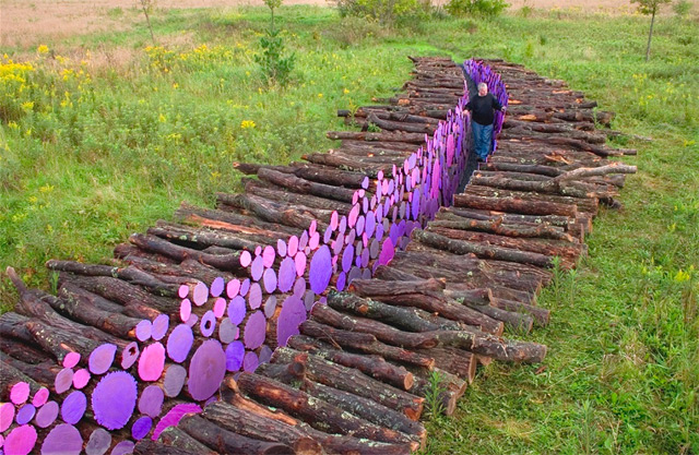 Wake: A Walkway of Severed Purple Logs by Michael McGillis