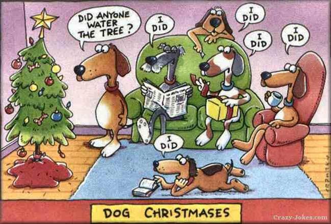 Dog Christmases