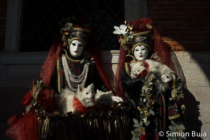 Maschere di Venezia 2013 – Simion Buia