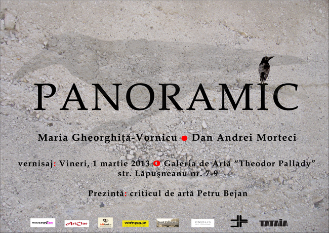 """Maria Gheorghiţă-Vornicu & Andrei Morteci """"Panoramic"""" @ Galeria Theodor Pallady, Iași"""