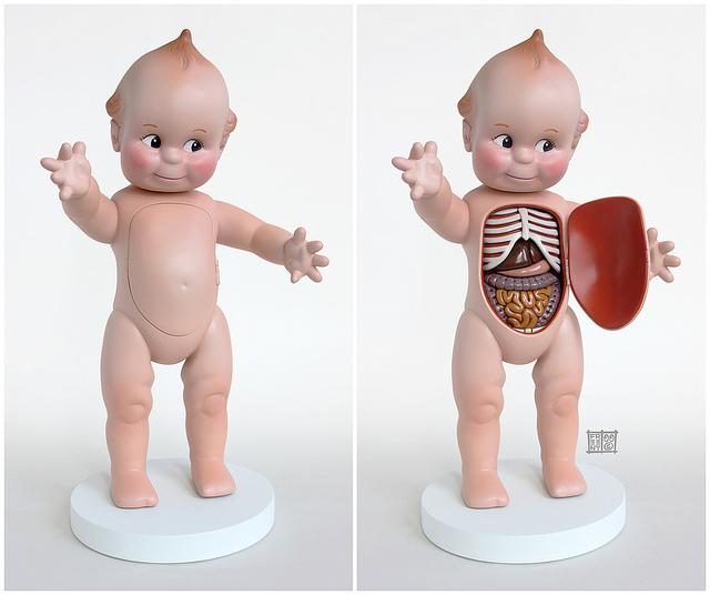 Toys as biological beings