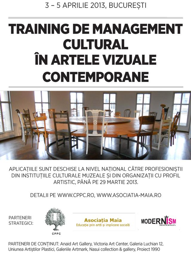 Prezentarea sistemului de lucru folosit de profesionişti din domeniul privat al culturii şi artelor contemporane: curs Asociația Maia și CPPC