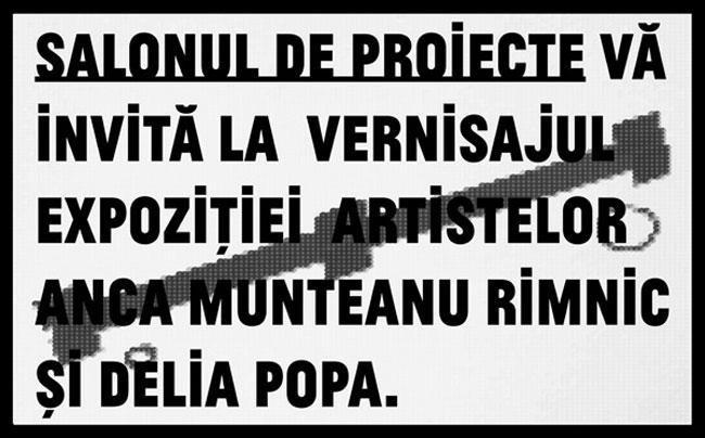 Anca Munteanu Rimnic si Delia Popa la Salonul de proiecte, București