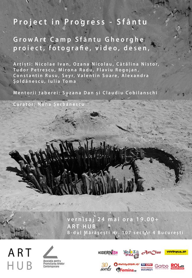 Project in Progress – Sfântu @ Art Hub, București