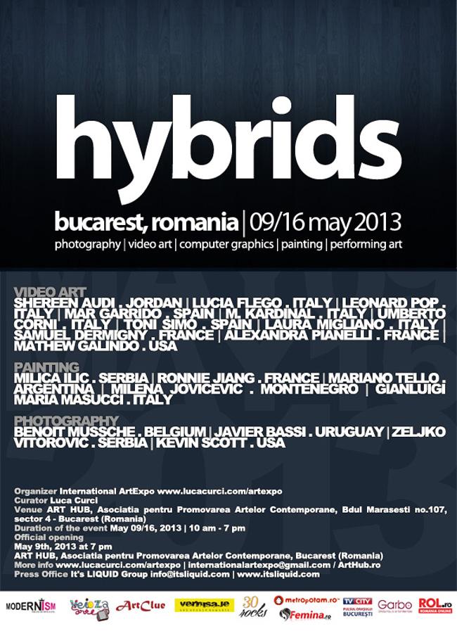 HYBRIDS | București 2013