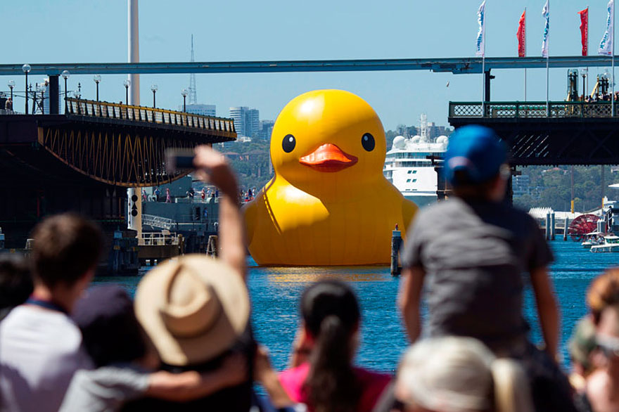The World's Largest Rubber Duck Arrives in Hong Kong