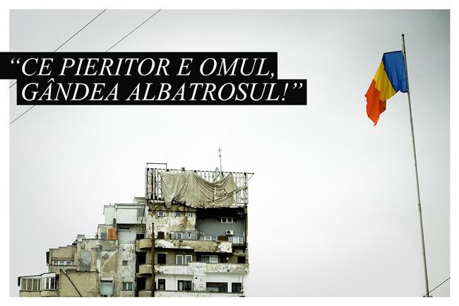 """""""Ce pieritor e omul, gândea albatrosul!"""" @ Atelier DIY – Facultatea de Arte și Design Timișoara"""