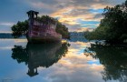 abandoned-ship-ss-ayrfield-floating-forest-1