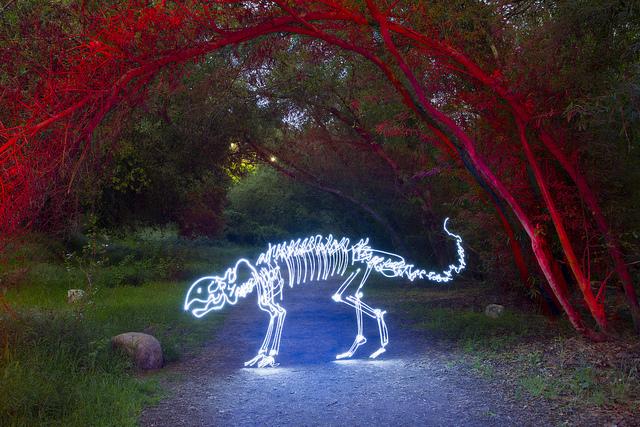Long-exposure light paintings