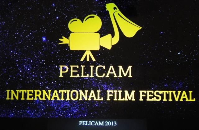Festivalul internaţional de film Pelicam 2013 – Tulcea