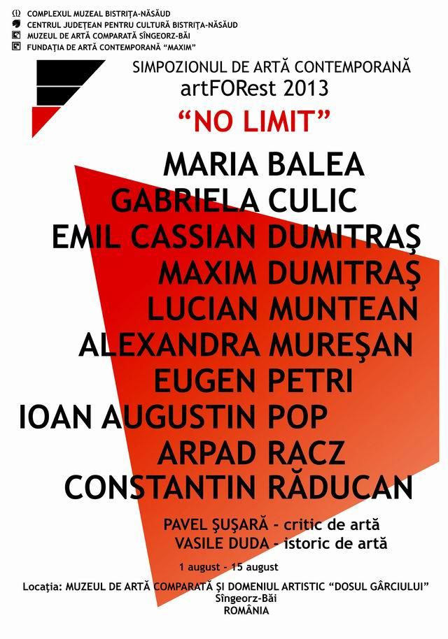 SIMPOZIONUL DE ARTĂ CONTEMPORANĂ – artFORest 2013