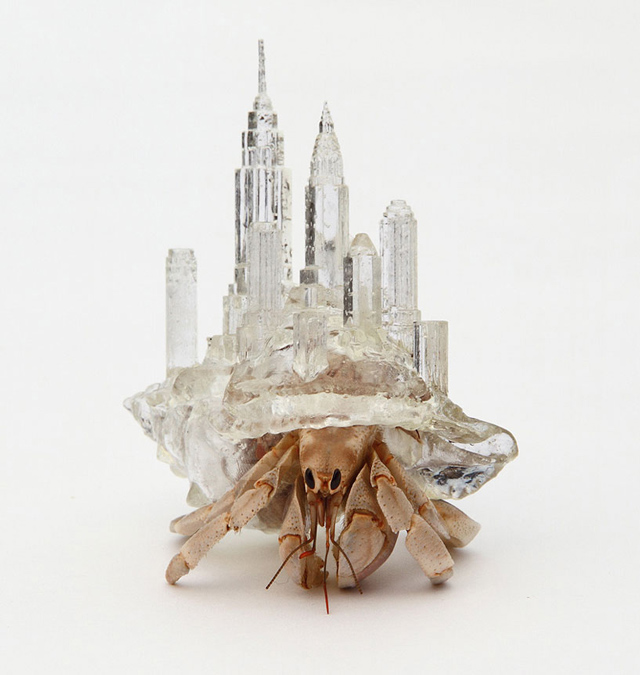 Architectural Shell Sculptures for Hermit Crabs