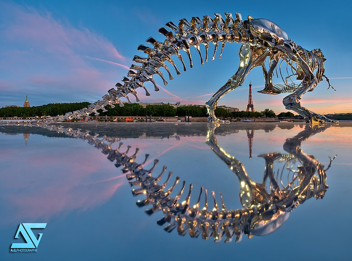 Life-Size T-Rex Skeleton Pops Up in Paris
