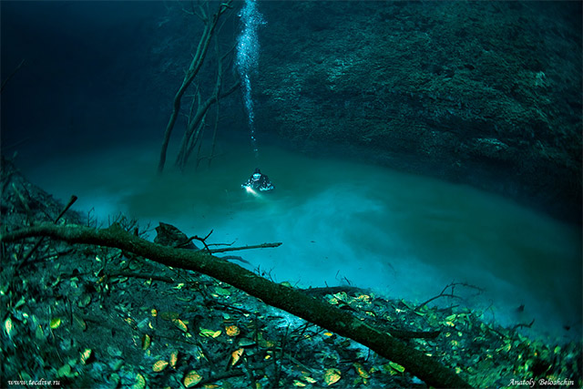 Hidden Underwater River Flows Along Mexico's Ocean Floor
