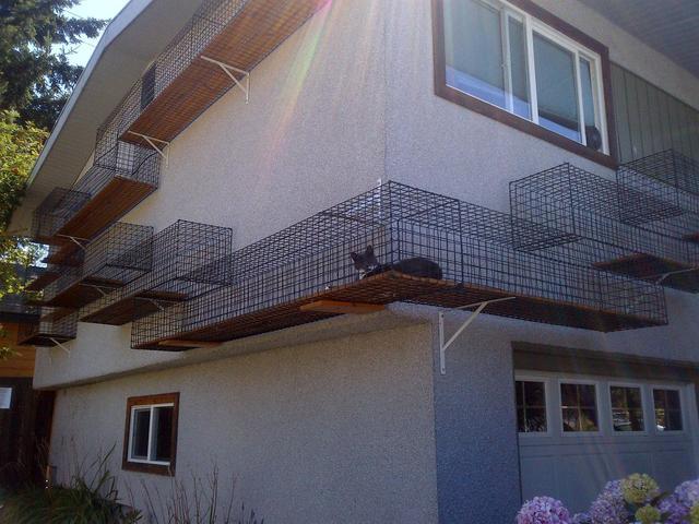 Outdoor Catwalk Around House