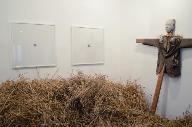 """Harvest 1"" @ Galeria ""Visual Kontakt"", Oradea"