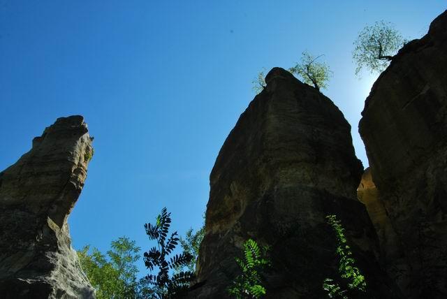 Resize of 15- Rezervatia geologica Gradina Zmeilor