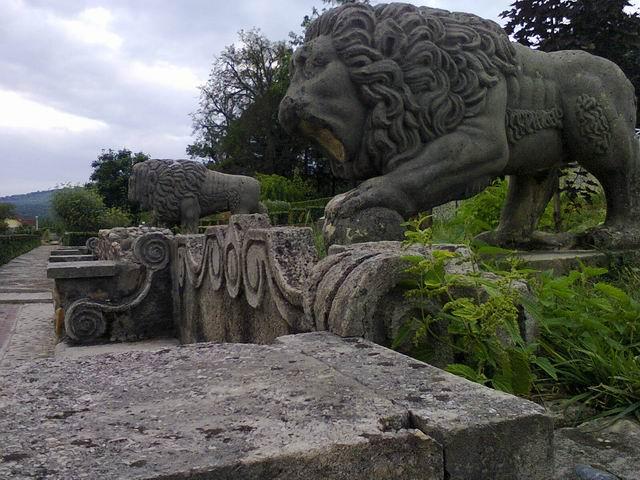 Resize of 27-leii din gradina