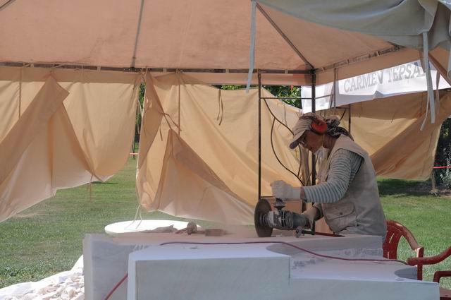 Resize of carmen tepsan - tabara sculptura mileniului 3 - parc titan LM_0017
