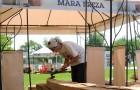 Resize of mara vilceanu breza - tabara sculptura mileniului 3 - parc titan LM_0004