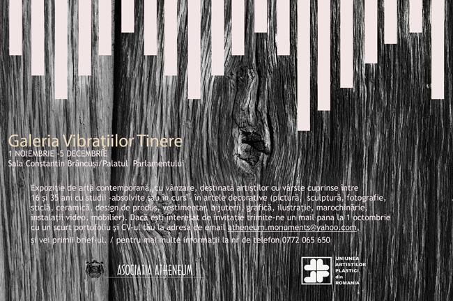 """Apel la lucrări """"Galeria Vibraţiilor Tinere – expoziţie destinată tinerilor artişti"""" la Sala Brâncuși, Palatul Parlamentului"""