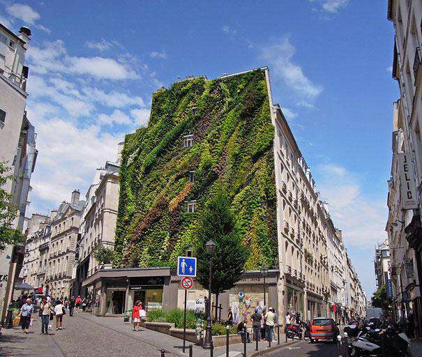 Stunning Vertical Garden Decorates Building In Paris