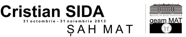 """Cristian Sida, """"Șah mat"""" @ galeria """"geamMAT"""" a Muzeului de Artă din Timișoara"""