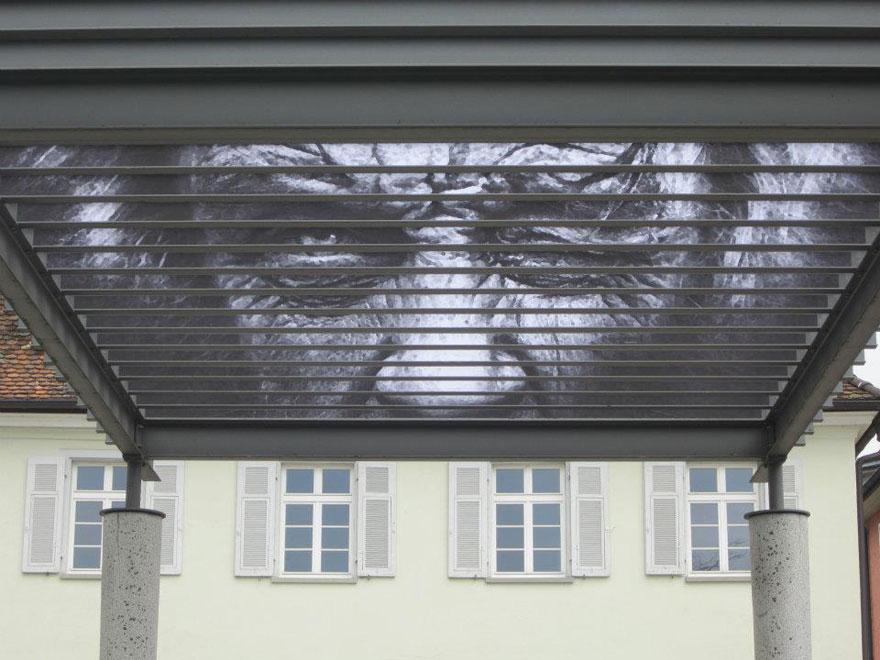 hidden-german-street-art-zebrating-14