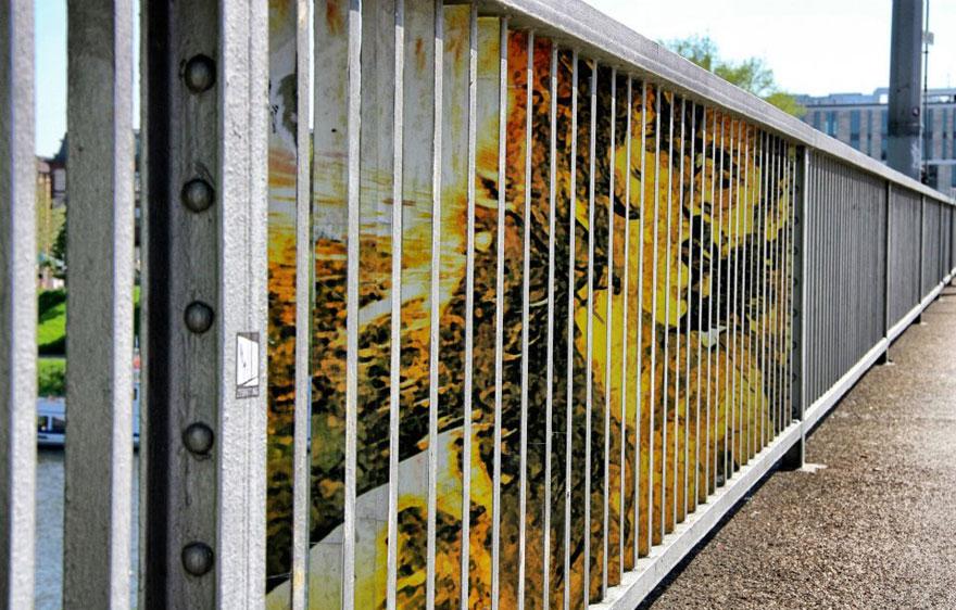 hidden-german-street-art-zebrating-5