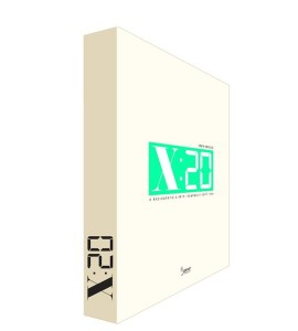 x20 – o radiografie a artei romanesti dupa 1989