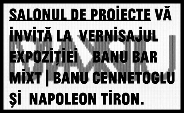 """Banu Cennetoglu și Napoleon Tiron """"Banu Bar Mixt"""" @ Salonul de proiecte, București"""