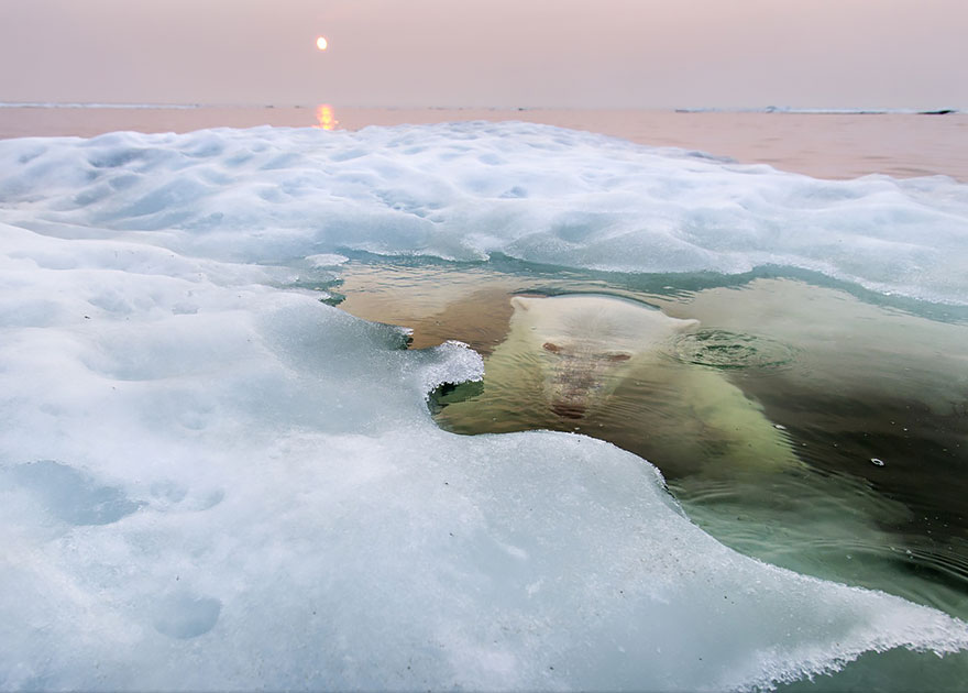 The Winners Of The 2013 National Geographic Photo Contest