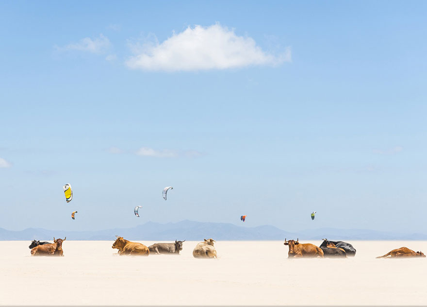 national-geographic-photo-contest-winners-2013-12