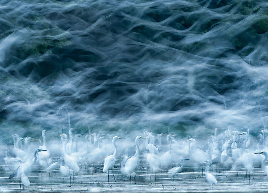 national-geographic-photo-contest-winners-2013-4