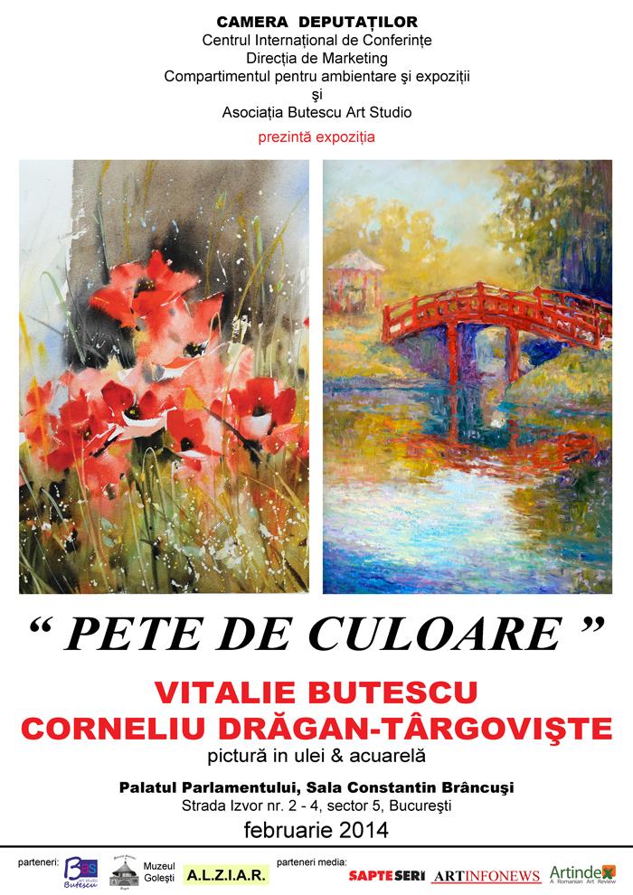PETE DE CULOARE @ PALATUL PARLAMENTULUI
