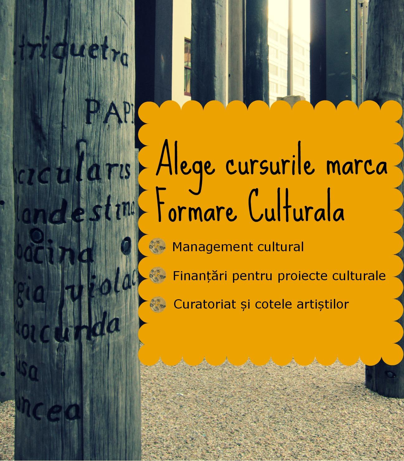 Cursuri culturale Turbo și Compresor, marca Formare Culturală: vino să găsești soluții practice și creative pentru proiectele tale culturale