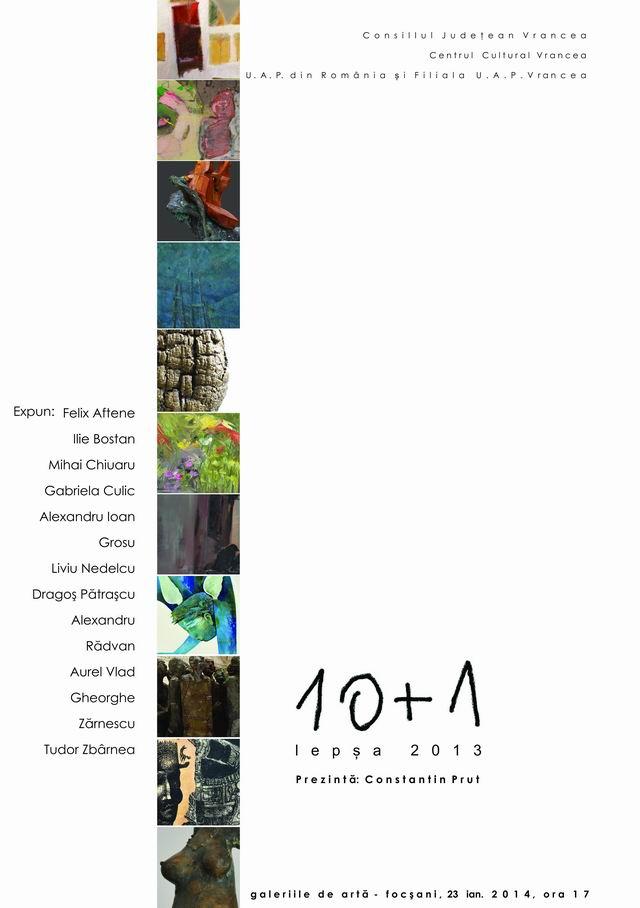 Zece plus unu – Tabăra Lepşa 2013