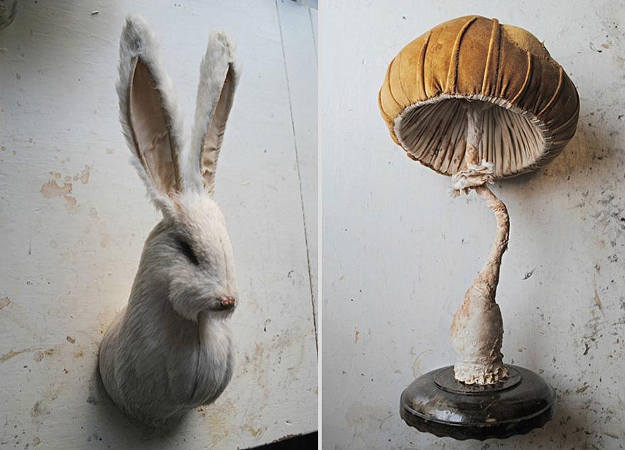 Self-Taught Artist Creates Fairytale Flora And Fauna From Vintage Fabrics
