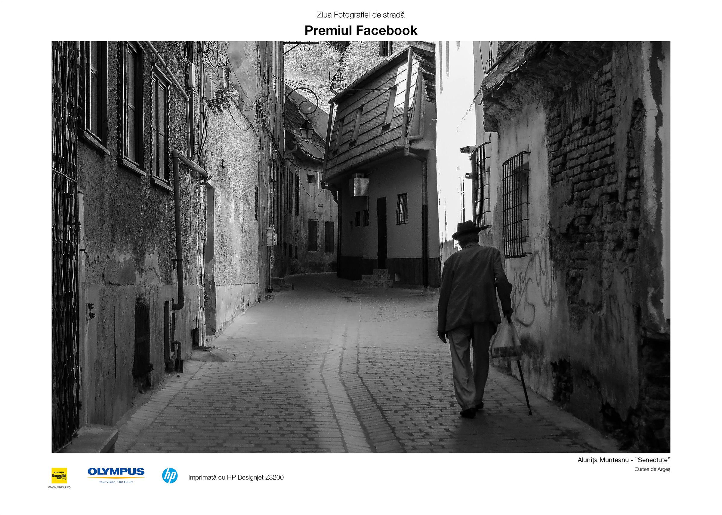 Premiul Facebook - Alunita Munteanu