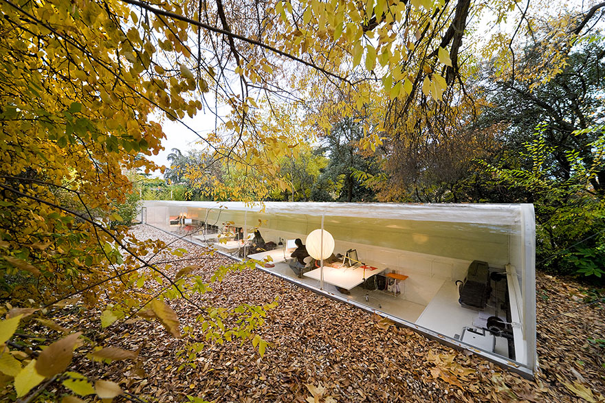 Office In Madrid Lets Employees Feel Like They're Working in the Woods