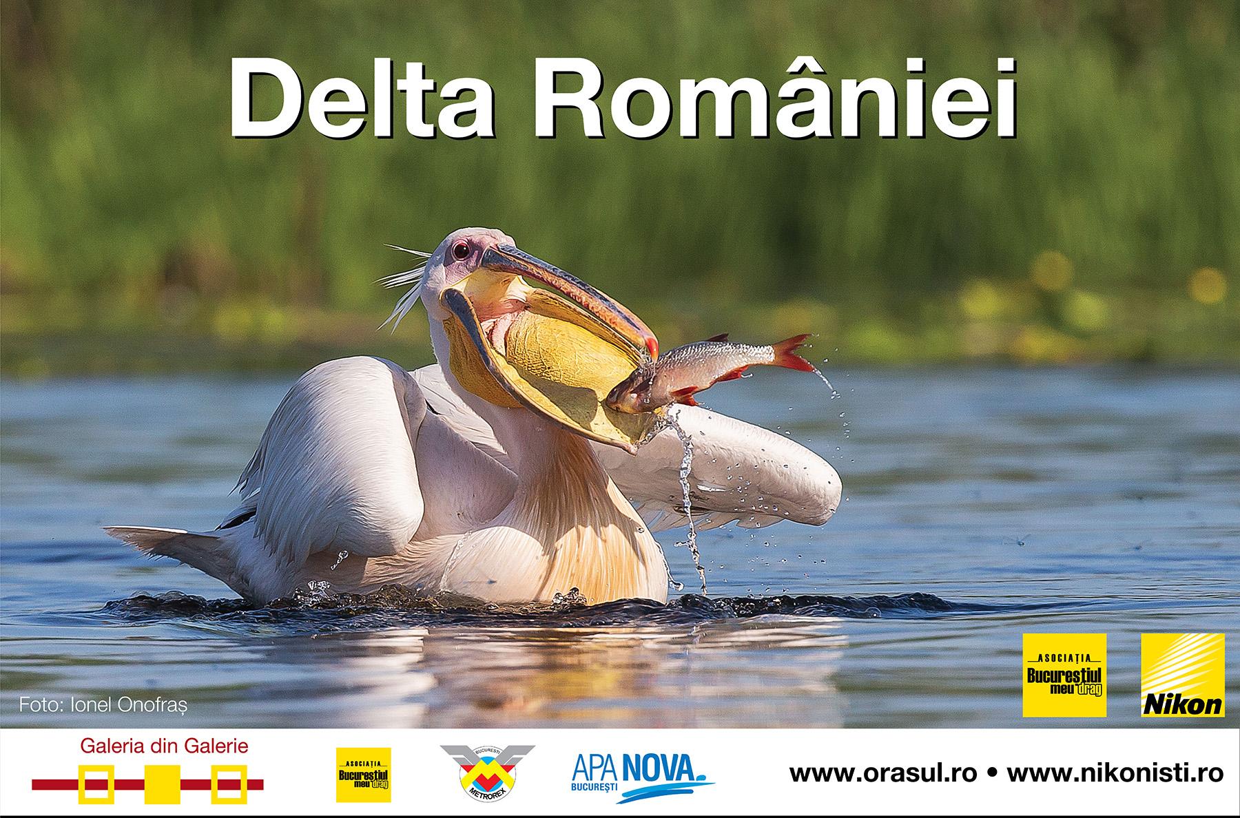"""""""Delta României"""", expoziție de fotografie @ Galeria din Galerie de la metrou Unirii 1"""